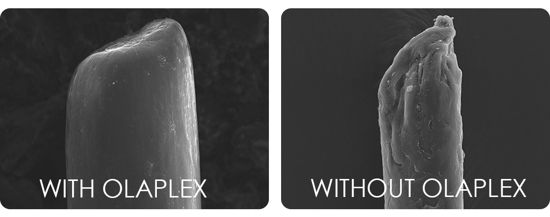 Haarspitze Olaplex Behandlung Detailaufnahme