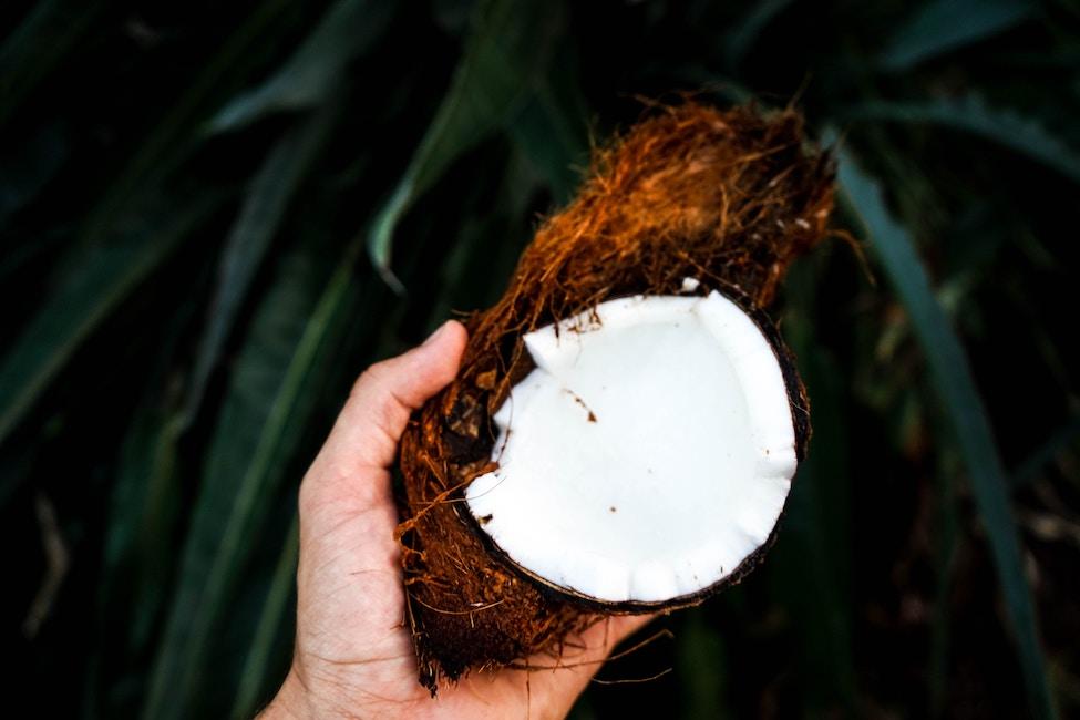 Kokosöl Lippenpeeling